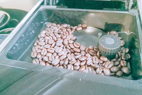 Kaffeegenuss Bohnen